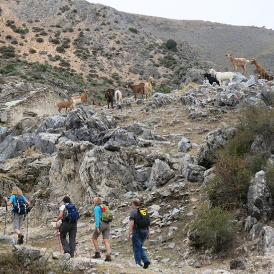 Frigiliana | Axarquia | Andalusië | Natuurreservaat
