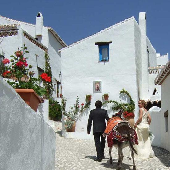 El Acebuchal | Andalusië